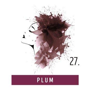 toner do włosów FUNKY COLOR - PLUM [27]