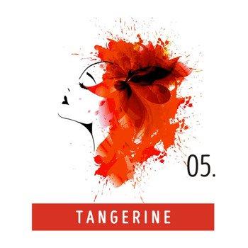 toner do włosów FUNKY COLOR - TANGERINE [05]